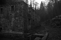 Dolský mlýn (pbr42) Tags: czechrepublic ceskesvycarsko architecture ruins house building stone mill blackandwhite bw trees forest spooky