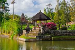 DSC_3309 (Sebastien J Bernard) Tags: jatiluwih rice terraces