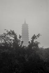B/N pagoda (rraass70) Tags: canon d700 monumentos retoques blancoynegro ninbinh deltadelriorojo vietnam