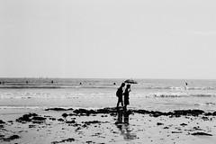 N0762019 (toshyie) Tags: fujiacros leicam6 summicronm50mm summer sea monochrome umbrella beach モノクローム 夏 japan sunny film フィルム