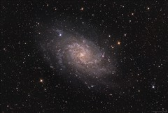 M33 - The Triangulum Galaxy (AstroDLJ) Tags: photography pixinsight space star cosmos universe sky astrophotography rgb galaxy m33 messier33 triangulumgalaxy