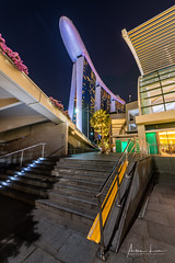 Looking Up Marina Bay Sands Hotel (Alec Lux) Tags: singapore architecture bay blue bluehour building buildings city cityscape exterior facade haida haidafilters hotel lights marina marinabaysands night nightscape outdoor outside skyline skyscraper tower urban