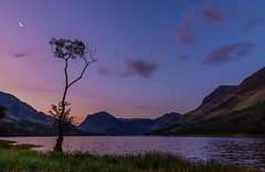 The Moon & The Tree (selvagedavid38) Tags: moon tree nationalpark lakedistrict lake water buttermere mountains sky dawn bluehour cumbria england