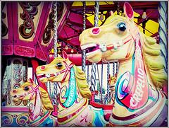 Carousel (Jason 87030) Tags: nag head horse ride carousel fun entertainment animal race winners grand national play ryde isle wiht shot color colour effect test experiment eyes teeth names mane reins shoot huawei august 2019 uk england crepello windsorlad