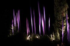 Neodymium Reeds