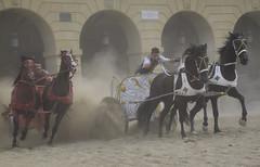cuadrigas (gabrielg761) Tags: cuadrigas roma carrera historia ecosdelpasado legionarios guerreros caballos