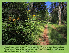 Psalm 143: 10 (karl.wolfgang (Appalachian Son)) Tags: virginia mountain shenandoah nationalpark trail september nature bible christianity psalm
