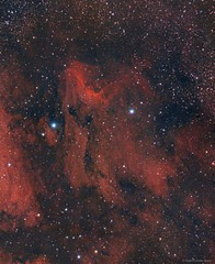 IC5067 - The Pelican Nebula in RGB (AstroDLJ) Tags: photography pelicannebula pixinsight space star cosmos ic5067 nebula universe sky astrophotography rgb stars