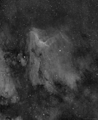 IC5067 - The Pelican Nebula in Ha (AstroDLJ) Tags: photography pelicannebula pixinsight space star cosmos ic5067 nebula universe sky astrophotography halpha stars