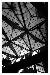 atrium 2 (Francis Mansell) Tags: glass roof atrium pane framework building architecture nationalgalleryofart monochrome blackwhite niksilverefexpro2 washington dc