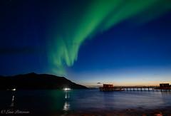 Northern lights at Kvaløya (Lena Pettersen.) Tags: nordlys northernlights aurora auroraborealis northernnorway nordnorge kvaløya rekvik nightphotopraphy color sky sea