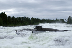 (helena.e) Tags: helenae semester vacation holiday älsa husbil rv motorhome storforsen water vatten waterfall vattenfall träd tree