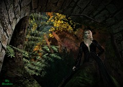 Decay and decadence (miemoonborn) Tags: secondlife firestorm weloverp we3roleplay