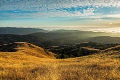 Mindego Trail (j1985w) Tags: california sky sunset mindegohill russianridge clouds grass hills fog