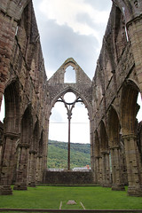 IMG_0420 (adgephoto01) Tags: tintern abbey