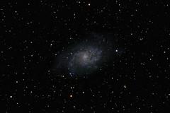Triangulum Galaxy (markkilner) Tags: canon eos 80d dslr broadstairs kent england kilner televue tv60 televue60 telescope apo astronomy astrophotography deepsky stars space vixen superpolaris longexposure nightsky skytelescope skyatnight backyardeos sequator deepskystacker galaxy triangulum m33 zwo asi120mmmini autoguider phd2 messier33 ngc604 spiral astrometrydotnet:id=nova3607735 astrometrydotnet:status=solved