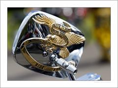 Live to ride (G. Postlethwaite esq.) Tags: dof derbyshire harleydavidson heagewindmill macro unlimitedphotos bokeh classicbikes closeup depth depthoffield mirror motorbike motorcycle photoborder selectivefocus