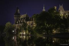 Vajdahunyad Castle - Budapest (gergely.t.springer) Tags: nikon d3500 jackaltripod night longexposure city vajdahunyad castle budapest hungary magyarország lake noflash capital drakula