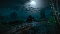 Geralt on the Path (Tom) Tags: geralt witcher
