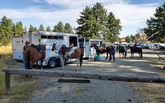 Los Vaqueros Horse Campground (ronking1) Tags: julian california unitedstatesofamerica