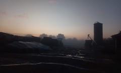 Blick über den Hof an einem Septembermorgen; Bergenhusen, Stapelholm (2) (Chironius) Tags: stapelholm bergenhusen schleswigholstein deutschland germany allemagne alemania germania германия niemcy klinx landwirtschaft nebel fog brouillard niebla morgendämmerung sonnenaufgang morgengrauen утро morgen morning dawn sunrise matin aube mattina alba ochtend dageraad zonsopgang рассвет восходсолнца amanecer morgens dämmerung gegenlicht herbst herfst autumn autunno efteråret otoño höst jesień осень