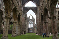 IMG_0426 (adgephoto01) Tags: tintern abbey