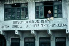 Self help centre (Dare to share) Tags: india westbengal sonada darjeeling asia tibetan himalaya man old selfhelpcentre windows jonasthoren