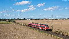442 146 - Großenhain (Bastian Weber) Tags: 442 db regio talent 2 sachsen bombardier rb re nahverkehr eisenbahn zug priestewitz grosenhain