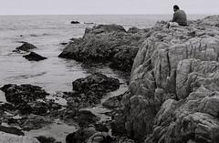 Contemplation (bingley0522) Tags: nikkormatft3 nikkor50mmf18 xp2 asilomar asilomarbeach pacificgrove pacificocean regardingnature californialandscape coastalcalifornia autaut