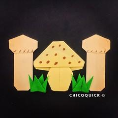 Origami Time! Amanita & Matsutake Mushroom  36/52 #おりがみ #夏 #Origami #Paper #Foldedbyme #Foldoftheday #Instaorigami #Summer #Sunday #Sep #08 #2019 #ElParaiso #Caracas #Venezuela #日本 #中國 #대한민국 #Uk #Deutsche #Россия #Ελλάς #Française #chicoquick (chicoquick) Tags: おりがみ 夏 origami paper foldedbyme foldoftheday instaorigami summer sunday sep 08 2019 elparaiso caracas venezuela 日本 中國 대한민국 uk deutsche россия ελλάσ française chicoquick