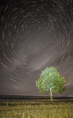 arbre dangers 1 (Lordey Thomas) Tags: astrophotographie longueexposition