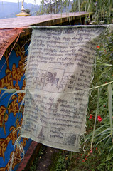 Spiritual information (Dare to share) Tags: india westbengal sonada darjeeling asia tibetan himalaya writing flags text jonasthoren
