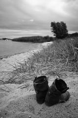 Stiefel (tom-schulz) Tags: ricoh grii monochrom bw sw stralsund thomasschulz stiefel strand küste düne baum wasser