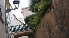 20190908_131606 (uweschami) Tags: spanien espania mallorca palma altstadt arabischesbad palmen hamam mauren banysarabs garten gewölbe