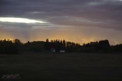 scene (zawaski -- Thank you for your visits & comments) Tags: canada alberta road edmonton zawaski©2013 swampdonkey calgary chrisczech canonefs1785mmf456isusm