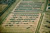 AMARC Apr 99 (8) (Al Henderson) Tags: a10 amarc arizona aviation c130 davismonthanafb f4 fairchild hercules lockheed mcdonnelldouglas phantom republic tucson usaf warthog boneyard desert military storage