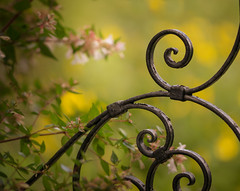 The Gate of Perfection (Lindsey1611) Tags: helminghamhall gate garden curly iron flowers sunshine afternoonsun bokeh depthoffield nostalgia suffolk