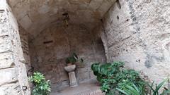 20190908_131731 (uweschami) Tags: spanien espania mallorca palma altstadt arabischesbad palmen hamam mauren banysarabs garten gewölbe
