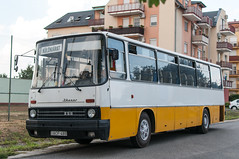 Ikarus ZSG (ac.Zadam) Tags: ikarus 256 hungary bus oldtimer restoration acf 480 acf480 budapest public transport yellow