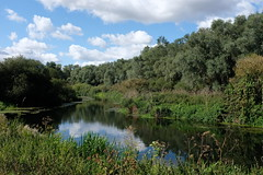 tranquility (bejem) Tags: peaceful tranquil river slow trees rushes banks water foliage northamptonshire rnene