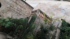 20190908_132322 (uweschami) Tags: spanien espania mallorca palma altstadt arabischesbad palmen hamam mauren banysarabs garten gewölbe