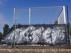 Mural in Cheltenham (for Cheltenham Paint Festival 2019) by SMT Art (chibeba) Tags: cheltenham town gloucestershire england english september 2019 autumn urban europe art streetart mural murals paint paintfest festival cheltenhampaintfestival cheltpaintfest colour