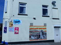 Mural in Cheltenham (for Cheltenham Paint Festival 2019) by Johnman (chibeba) Tags: cheltenham town gloucestershire england english september 2019 autumn urban europe art streetart mural murals paint paintfest festival cheltenhampaintfestival cheltpaintfest colour