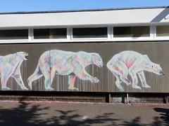 Mural in Cheltenham (for Cheltenham Paint Festival 2019) by Sophie Long (chibeba) Tags: cheltenham town gloucestershire england english september 2019 autumn urban europe art streetart mural murals paint paintfest festival cheltenhampaintfestival cheltpaintfest colour