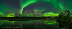 Aurora over Madeline Lake Panorama (Sept 7, 2019) (Amazing Sky Photography) Tags: panorama madelinelake yellowknife nwt aurora northernlights reflection water lake trees stars ptgui ingraham trail september bigdipper ursamajor capella pleiades