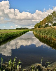 Reflections (kuratormkl) Tags: reflections clouds sky channel water autumn nature weather landscape rush