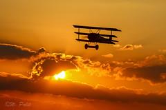Fokker Dr.I (WP_RAW) Tags: fokkerdri oldtimerfliegertreffen hahnweide ott16