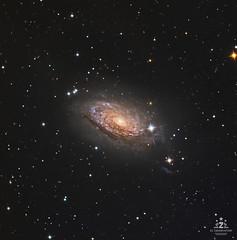 M63 - Galassia Girasole (Pool187) Tags: universe cosmos cosmo m63 girasole galassia galaxy astrophotography astrofotografia astrometrydotnet:id=nova3607703 astrometrydotnet:status=solved