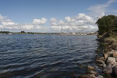 Wolphaartsdijk divesite (Arne Kuilman) Tags: duiken diving zeeland day dag veersemeer scubadiving nederland netherlands nikon 28mm wolphaartsdijk duikstek japansezeepbelslak divesite duikplek