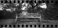 2420 Daydream. (Monobod 1) Tags: ondu 135 panoramic expired ilford hp5 rodinal pinhole lensless epsonv800